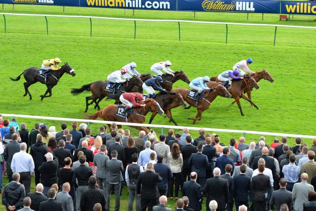 Ayr Gold Cup Result: Highland Colori Storms to Victory at 20-1