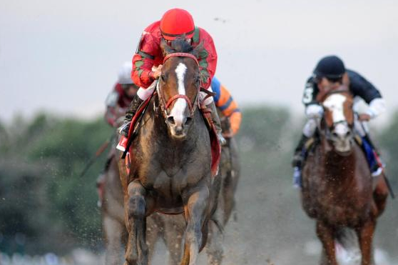 Flat Out Looks to Make It Three in a Row at Jockey Club Gold Cup