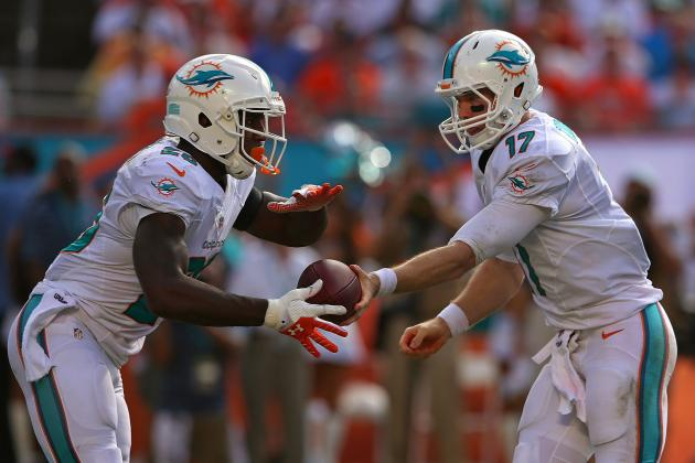 Are Dolphins Ready for the Spotlight?