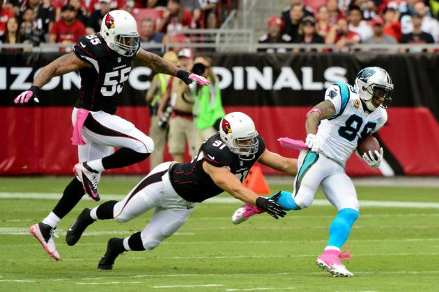 Steve Smith Calls out Referee Dan Ferrell After Loss to Cardinals