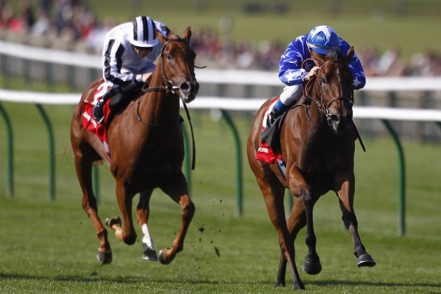 Future Champions Day 2013: Racecard for Dewhurst and Cesarewitch at Newmarket