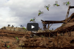 Watch: Biggest Backflip in Biking History