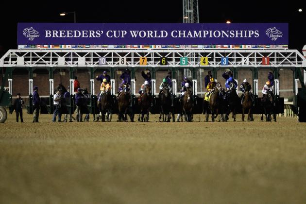 Top Betting Choices for $5 Million Breeders' Cup Classic