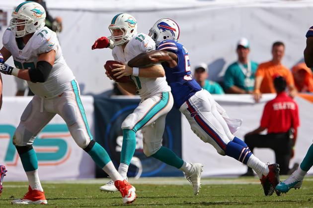 Tough Sledding Ahead for Dolphins