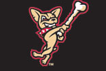 El Paso's Minor League Baseball Team Will Be the Chihuahuas