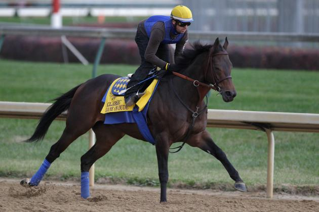 Breeders' Cup Pre-Entries Revealed for 30th Edition