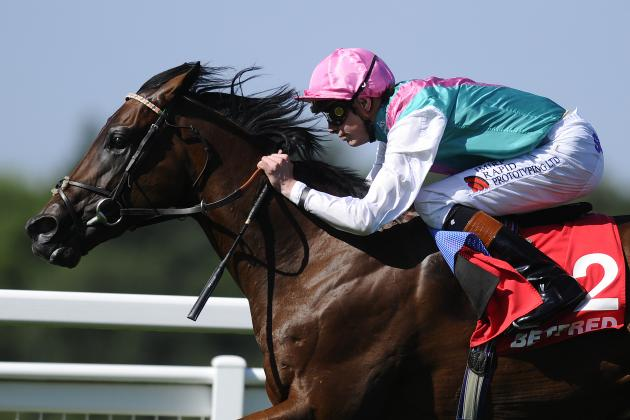 Horse Racing: Kingman Is Fine After Ankle Surgery