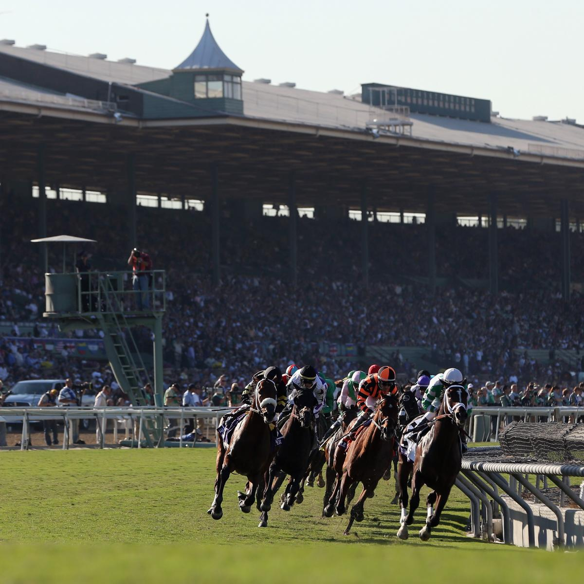 Breeders Cup 2013 Post Positions And Predictions For 3