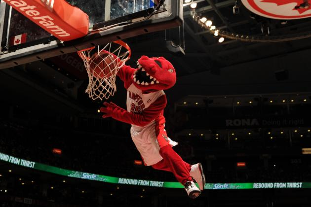 Toronto Raptors to Replace Injured Raptor Mascot with Understudy Named 'Stripes'