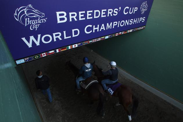Breeders' Cup 2013 Prize Money: $5 Million Purse Makes Race Major Attraction