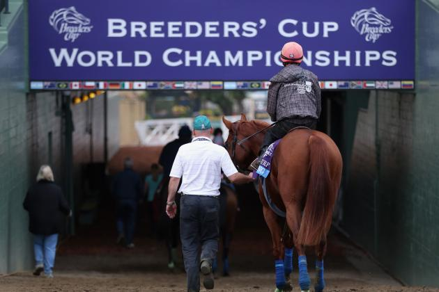Breeders' Cup 2013 Post Positions: Biggest Names in Stacked Classic Field