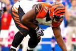 Report: Bengals' Atkins Has Torn ACL
