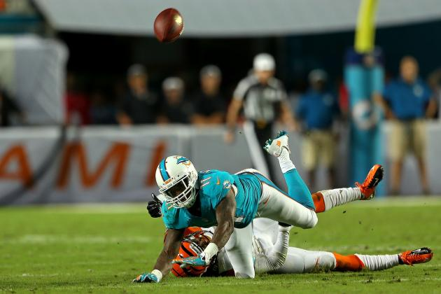 Mike Wallace's Updated 2013 Fantasy Outlook After Week 9