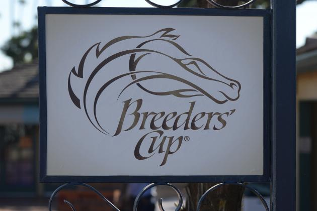 Breeders' Cup 2013: Safest Bets for Saturday's Classic G1 Race
