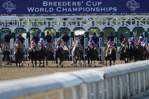Breeders' Cup 2013 Replay: Video, Highlights and Recap