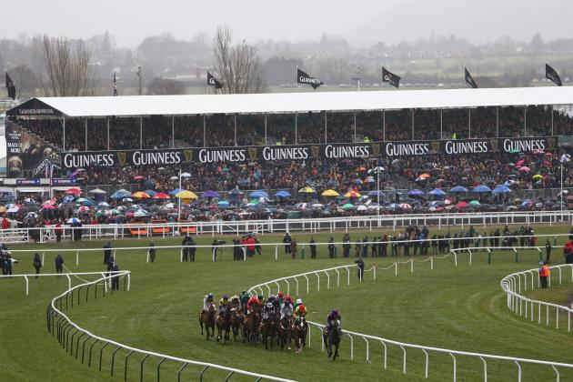 Cheltenham Meeting 2013: Updates on Winners, Placings and Payouts