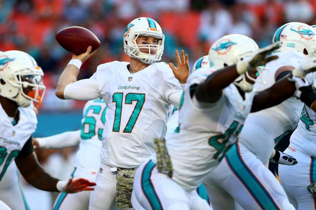 Who Are the 2013 Miami Dolphins?
