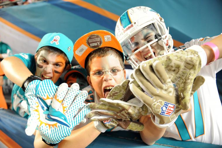 Dolphins' Latest Win a Positive Note on Roller-Coaster Season