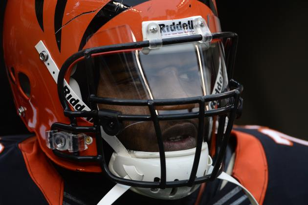 Collins' Addition Big for Bengals O-Line, Too