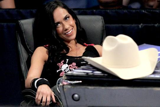 New Reports Emerge Regarding AJ Lee/Michelle Beadle Backstage Incident