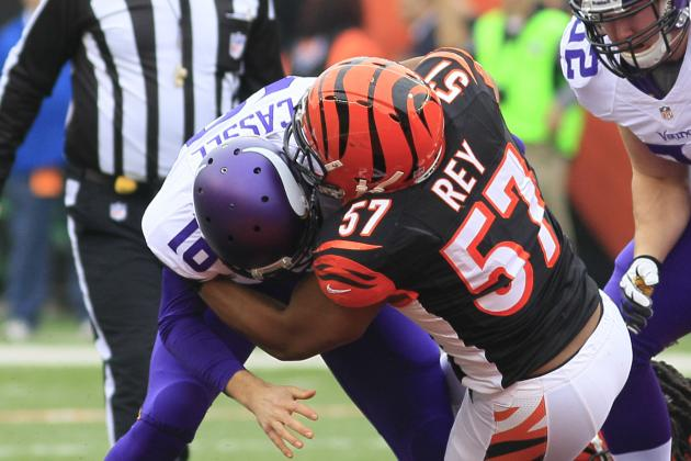 What Are the Bengals' Options with Their 2014 Free Agents?
