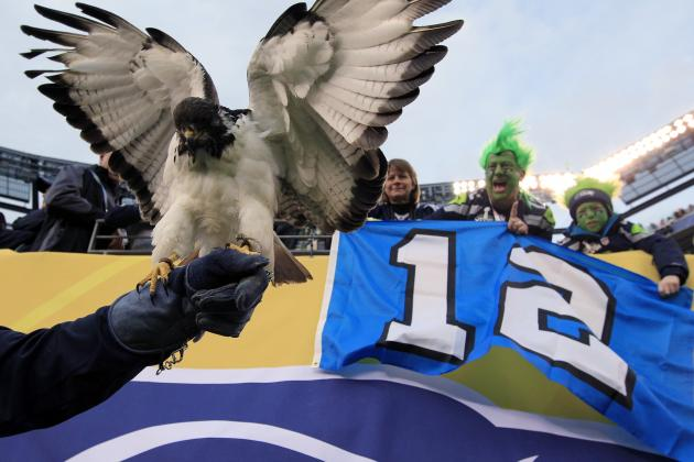 Taima the Hawk: Everything You Need to Know About Seahawks' Feathered Mascot