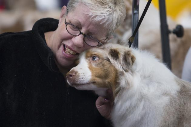 Westminster Dog Show 2014 Results: Best of Breed Winners and Day 1 Recap