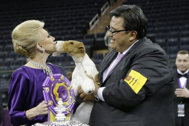 2014 Westminster Dog Show: Breaking Down Winners of Each Group