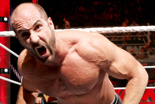 WWE Elimination Chamber 2014: Fringe Stars Who Will Make Big Statement