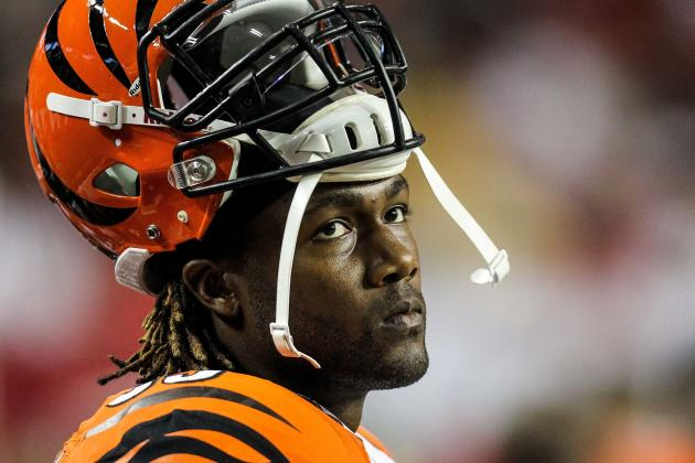 It's Buyer Beware for Bengals Defensive End Michael Johnson