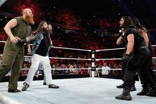 WWE Elimination Chamber 2014 Results: Shield and Wyatts Live Past Expectations