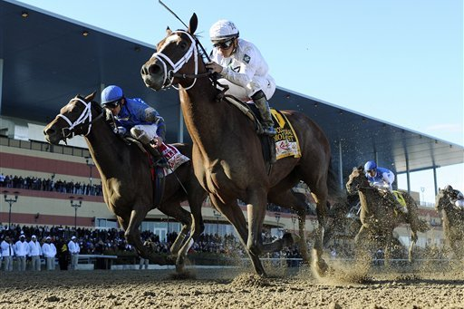 Road to Kentucky Derby Goes Through Gotham at Aqueduct