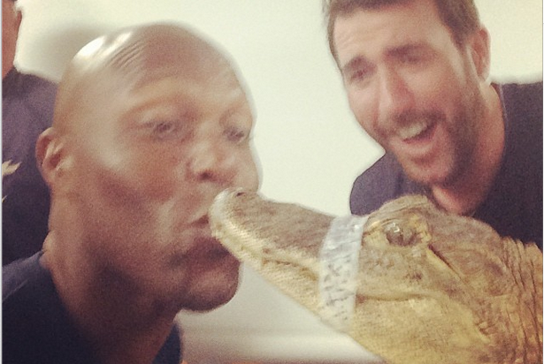 After Verlander's Dare, Hunter Kisses Alligator
