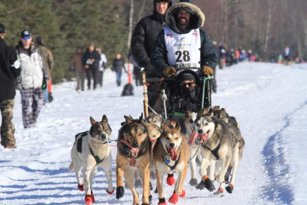 Iditarod 2014: Updated Results, Dog Sled Standings, Schedule and Top Storylines