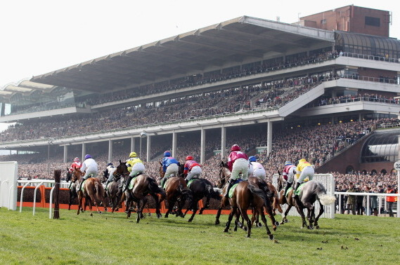 Cheltenham Festival 2014: Pick of the Week Ahead