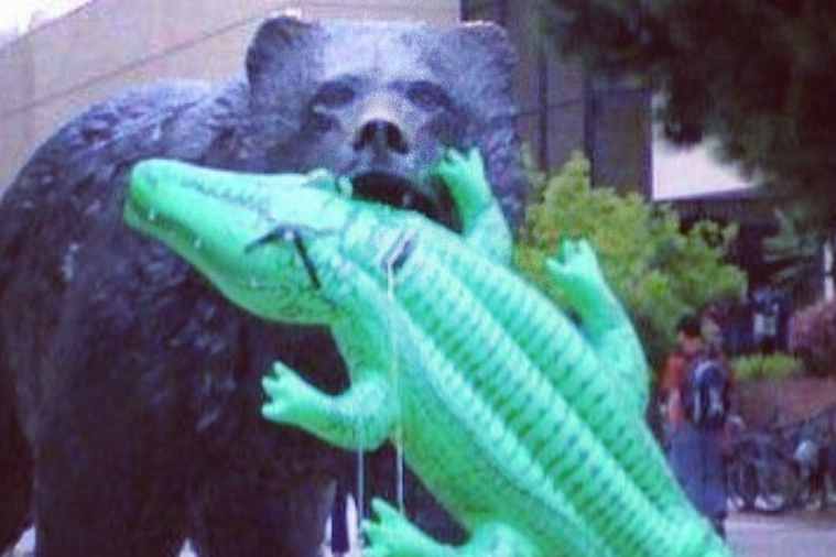 UCLA Bruin Statue Feasts on Gator Prior to Sweet 16 Showdown