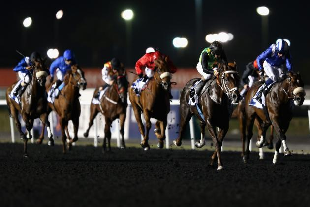 UAE Derby 2014: Post Time, Post Positions, Contenders Odds and Schedule