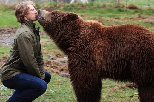Here's A Photo Of David Booth French Kissing A Grizzly Bear
