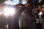Watch: Unofficial Cubs Mascot Punches Fan