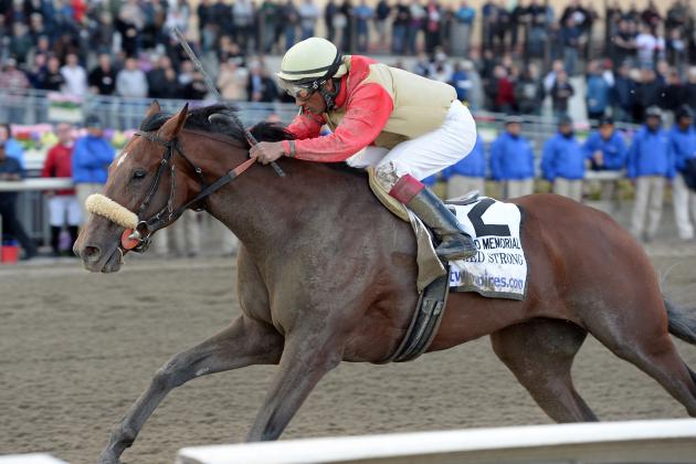 Wood Memorial 2014 Results: Final Order, Storylines Heading into Kentucky Derby