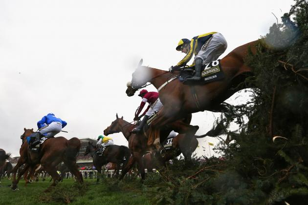Scottish Grand National 2014: Winner, Payouts and Order of Finish