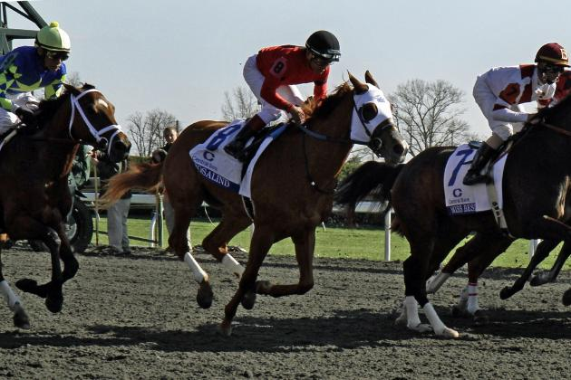 Coolmore Lexington Stakes 2014: TV Schedule, Post Positions, Picks, Contenders