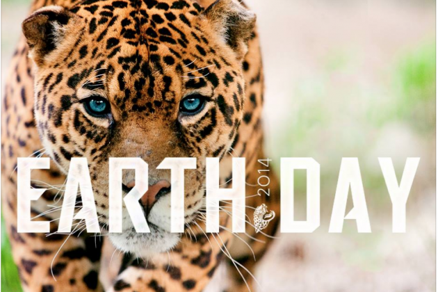 Jags Post Awesome Earth Day Picture