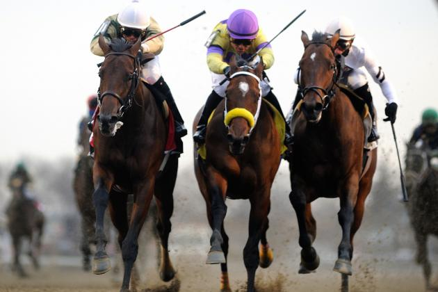 2014 Kentucky Derby Contenders: 5 Horses to Watch for Run to the Roses