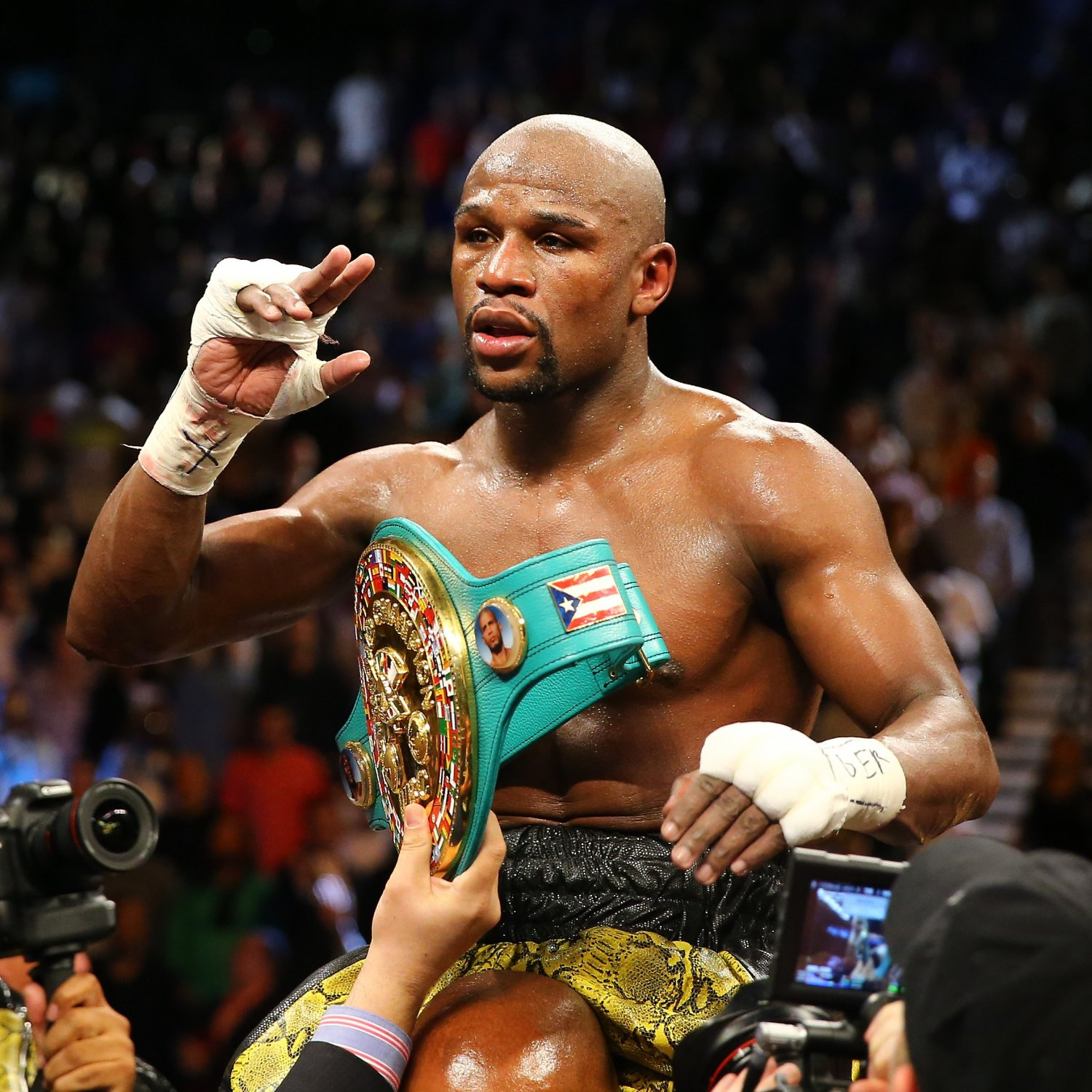 Magnificent Resume Mayweather Contemporary - Entry Level Resume ...