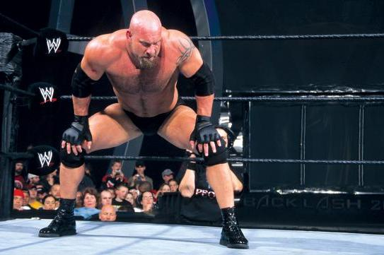 Report: Bill Goldberg Interested in Doing a Match at WrestleMania 31