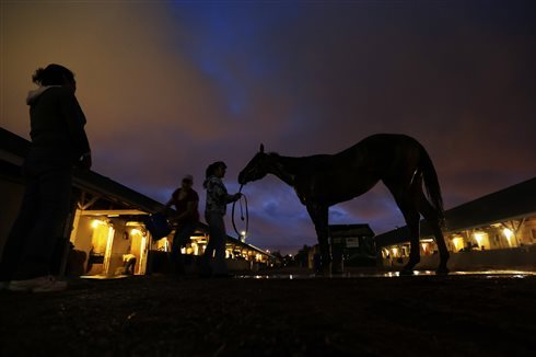 Kentucky Derby 2014: Post Positions, Odds and Sleepers at Churchill Downs