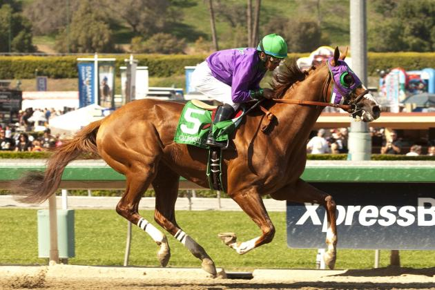 Kentucky Derby Contenders 2014: Odds, Jockey and Pedigree Info for Top Favorites