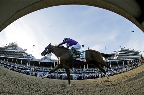 Kentucky Derby 2014: Horses with Momentum Heading into Preakness Stakes Race
