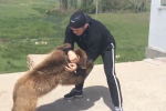 UFC Fighter's New Sparring Partner: Baby Bear